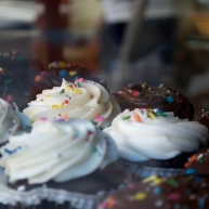 Chocolate cupcakes with pure white icing and dazzling sprinkles.