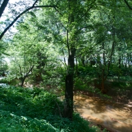 Solomon's Creek, sometimes called Sulfur Creek, pollutes the Susquehanna River every second. Where does it all come from?