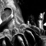 The paw of a lion sculpture on Rittenhouse Square.