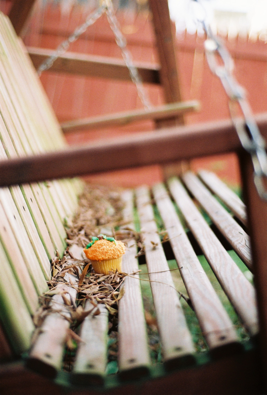 A vanilla cupcake that resembles a pumpkin sits in dead leaves on a swing in my backyard.