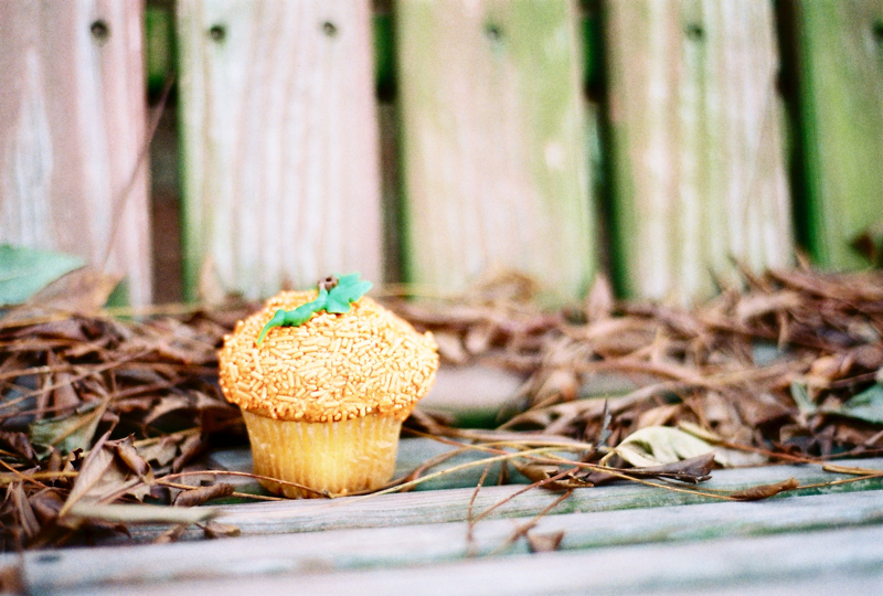 Does this cupcake resemble a cupcake or is it a pumpkin that resembles a cupcake?