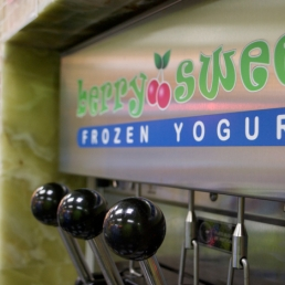 One of the many machines for different frozen yogurt flavors in Berry Sweet.