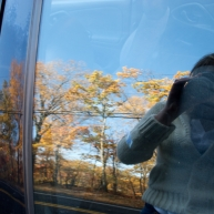 Unfortunately, the foliage I see is usually through a car window. But I finally stopped to breathe it in.