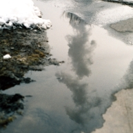 Water reflected in water.