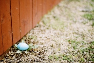An Easter egg hunt for the kids.