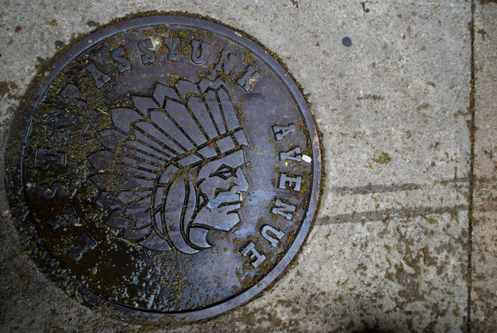 I liked the sewer lids on Passyunk a lot. This was my favorite.
