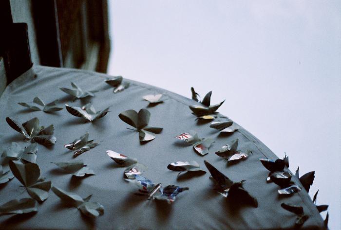 PB(utterflies)R.