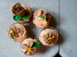 The pretty bunch of cupcakes.