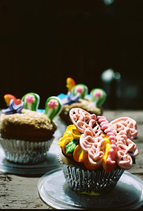 Summer cupcakes from Wegman's.