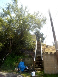 Steep steps leading to someone's house.