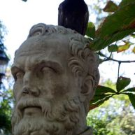 Pigeon on DeMarchi's head!