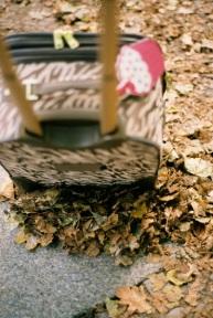Fall travels.