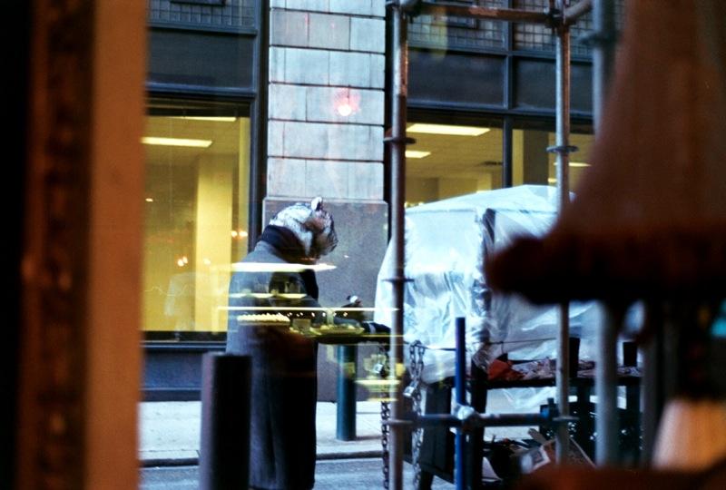 BIg Bear in the window.