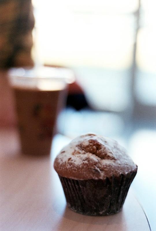 Singular cappuccino muffin.