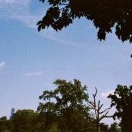 Skyline & Landscape.