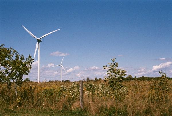 Wind field.