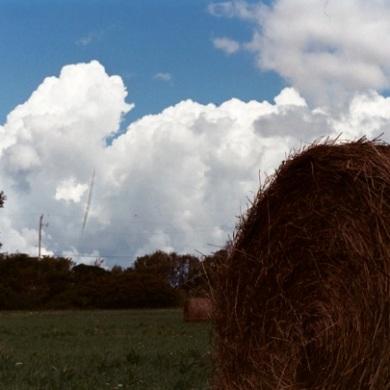 Bails of hay.