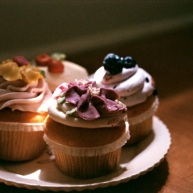 Sunshine on my cupcakes.