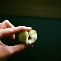 Snack Apple.