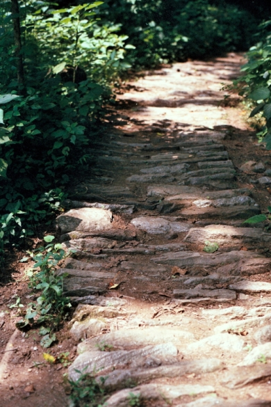 Paths & trails, just for us.