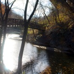 Wissahickon Creek under the Memorial Bridge.