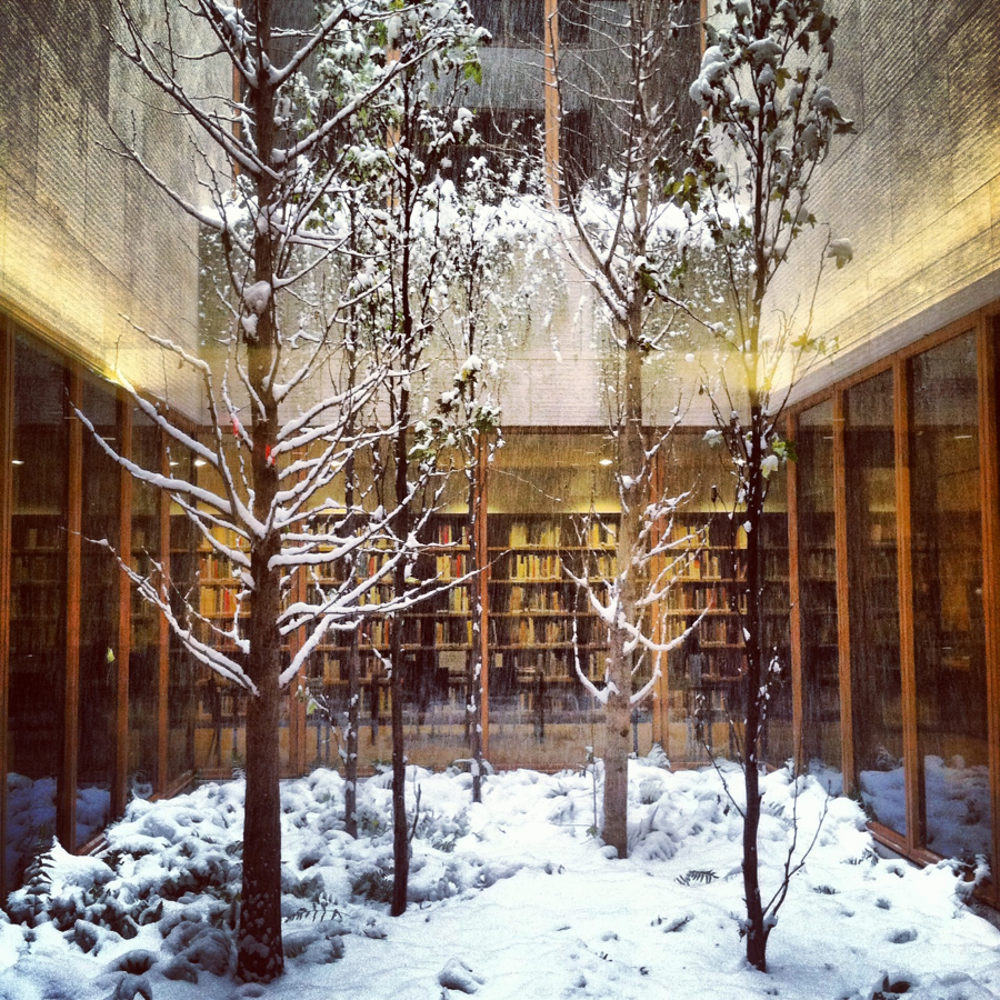 The indoor garden looks like a snow globe!