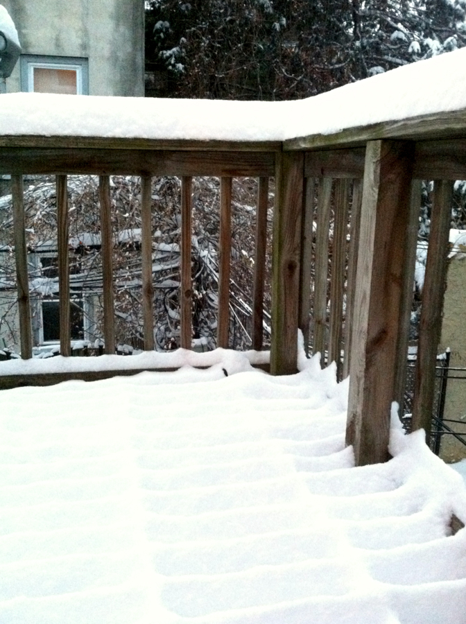 My backyard winter wonderland.