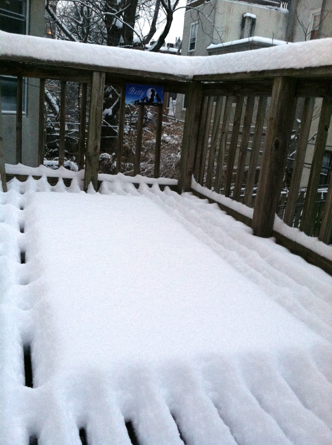 Summer is dead: Big Hessum (my rug from Ikea) in his snowy casket on my deck.