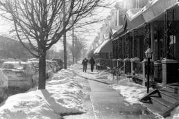 Aramgino Avenue in the glistening snow and sun.