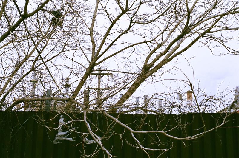 Industrial Landscape: Grays Ferry, Philadelphia.