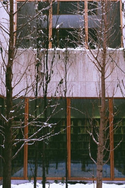 Snow falls into the Garden in the Gallery at the Barnes Foundation.