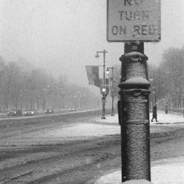 No turn on black or white.