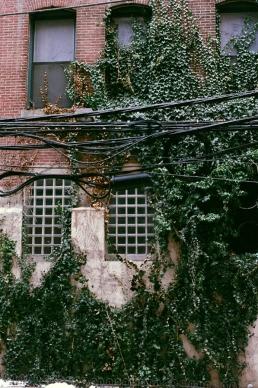 North 13th Street Jungle, Rebman Building.
