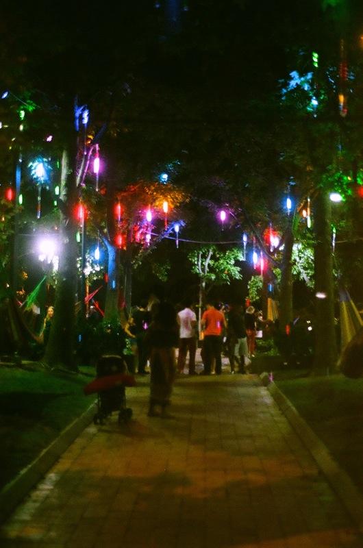 Poorly lit walkways, well lit trees.