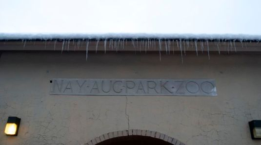 The former Nay Aug zoo.