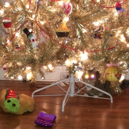 Sweet Pea camouflages herself as Christmas lights.