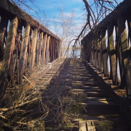 Amazing & abandoned.