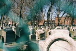 Multifenced Palmer Cemetery, Fishtown.