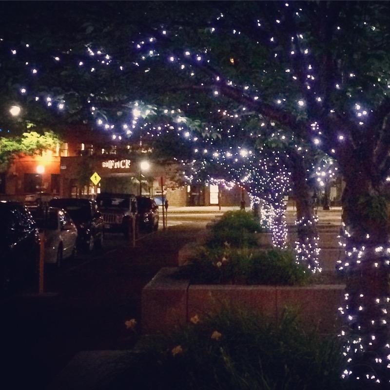 The Diamond City sparkles at night.