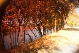 Nescopeck in the fall.