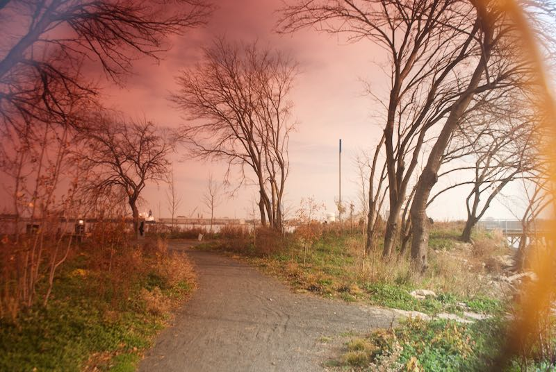 Washington Avenue Pink.