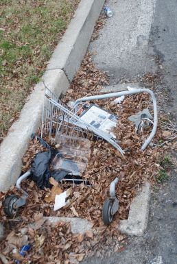 When a shopping cart just can't shopping cart anymore.